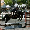 Destrier Jumping