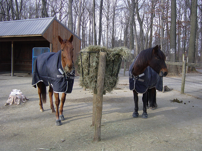 Кормушки для лошадей своими руками 2
