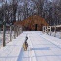 Leo patrol in the snow