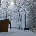 Winter 8